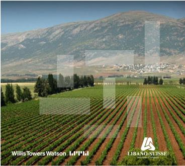 SECURE YOUR VINEYARDS: A Conference and Wine Tasting by Libano-Suisse Insurance and Willis Towers Watson Lebanon